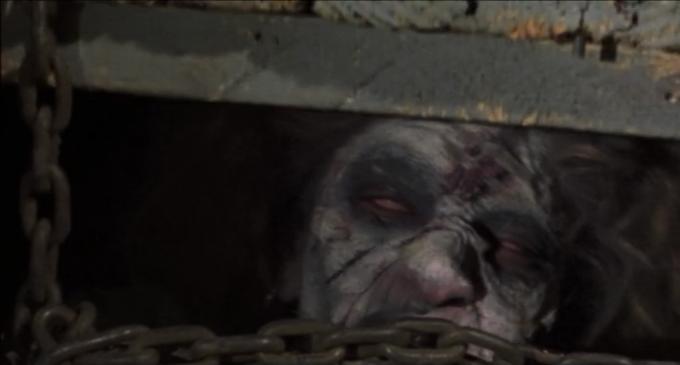 Cheryl (The Evil Dead, 1981)